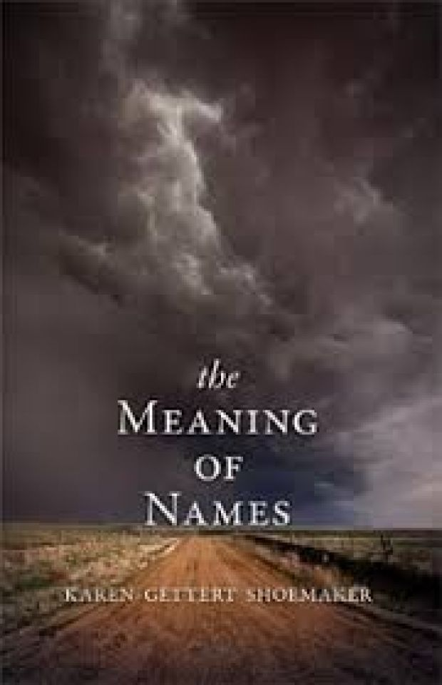 Book review: 'Meaning of Names' by Karen Gettert Shoemaker ...
