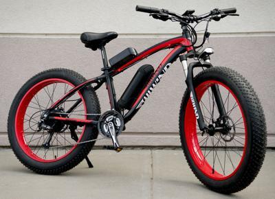 E Bikes 4 17