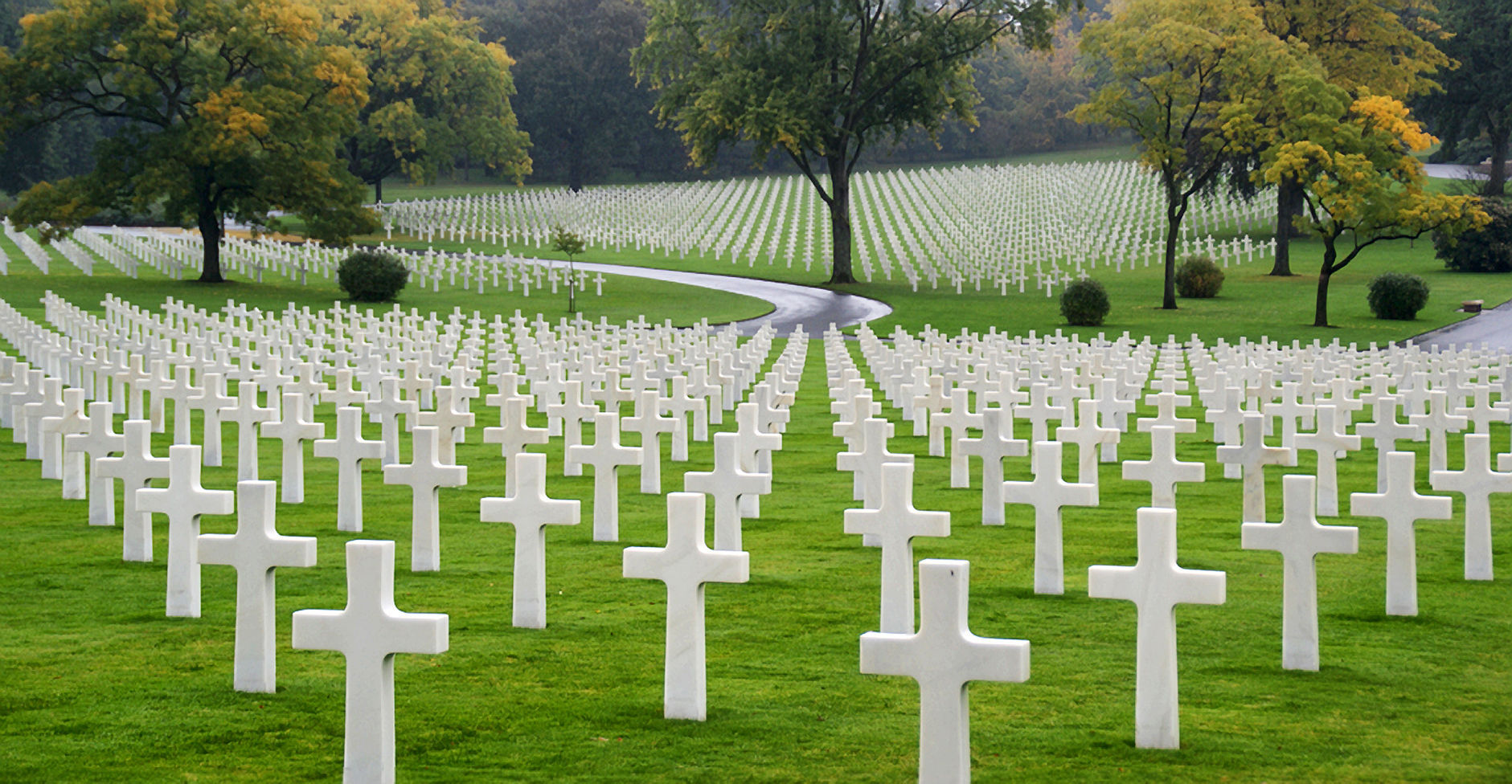 i look forward to hearing from you cover letter%0A Lorraine American Military Cemetery