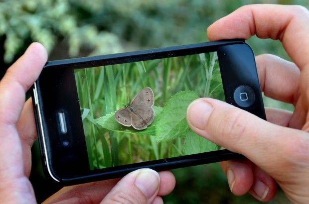 Bildergebnis für nature, smartphone