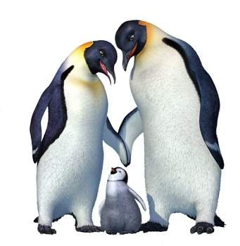 Happy Feet Is Funny Family Entertainment Entertainment