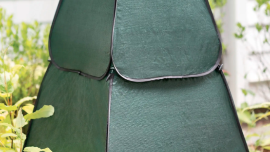 Sarah Browning: Protecting your patio plants