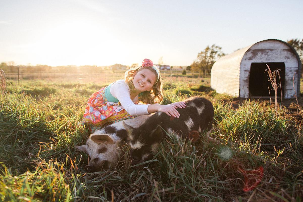 Anchor Meadow Farm
