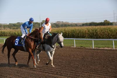 Lincoln Horse Race