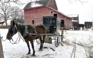 Convenient Amish Proposal