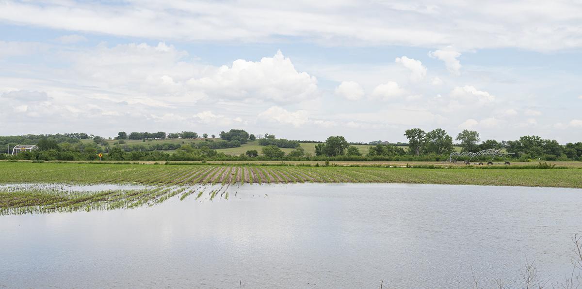Fields under water, 5.30