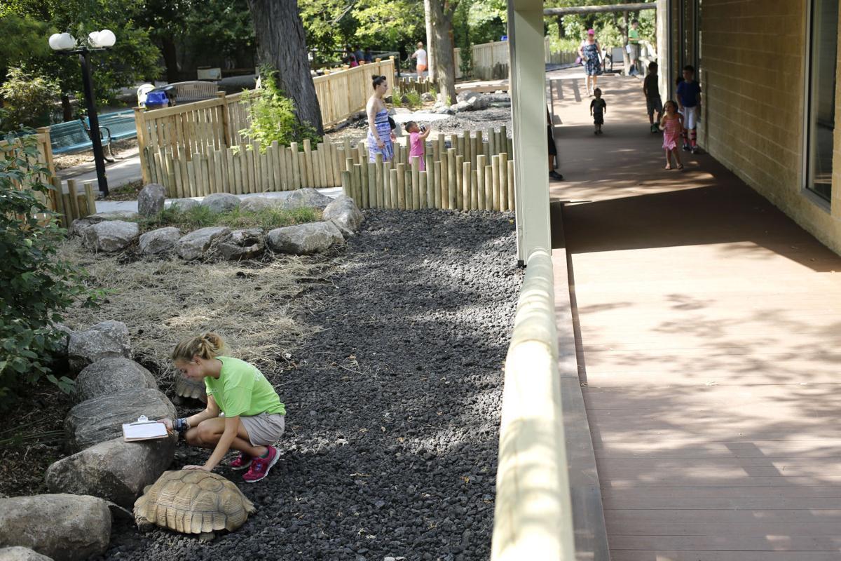 memorializing loved ones zoo u0027s tortoise trek built in honor of