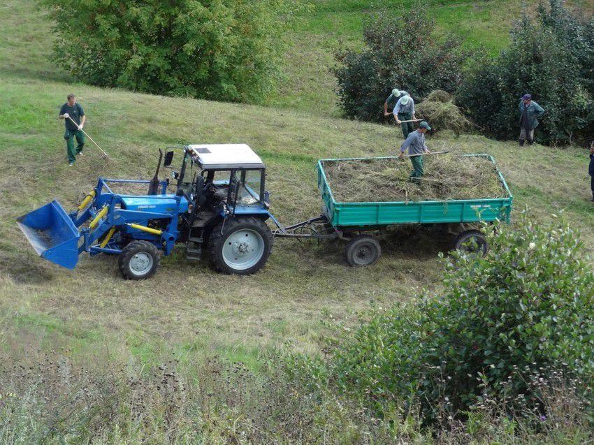 Russian farm scene