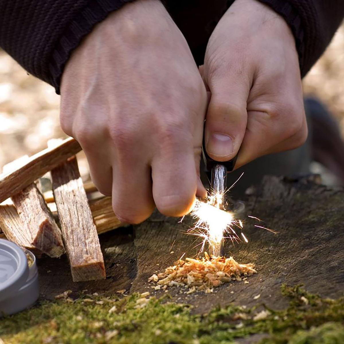 Survival Skills: Building Basic Outdoor Survival Skills