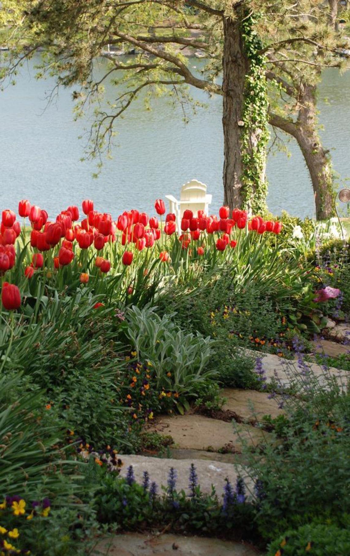 Carol S Garden: Mary Carol Garrity: Welcome To My Garden At Innisfree