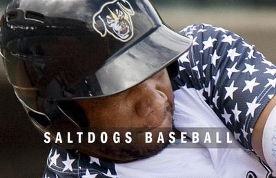 Lincoln Saltdogs baseball logo 2014