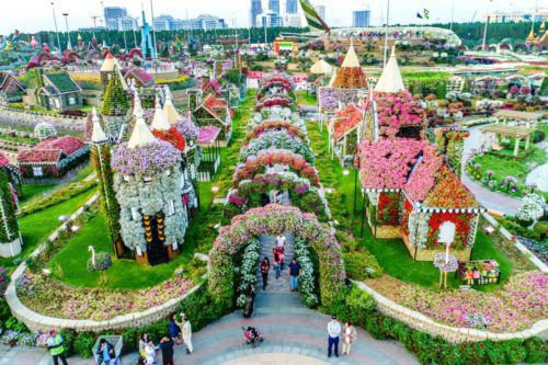 The World\'s Largest Flower Garden Is In A Very Unexpected Place ...