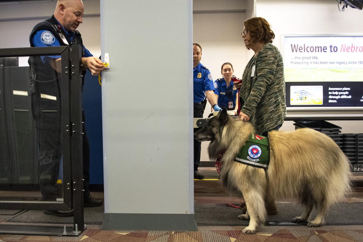 Airport dogs, 1.18