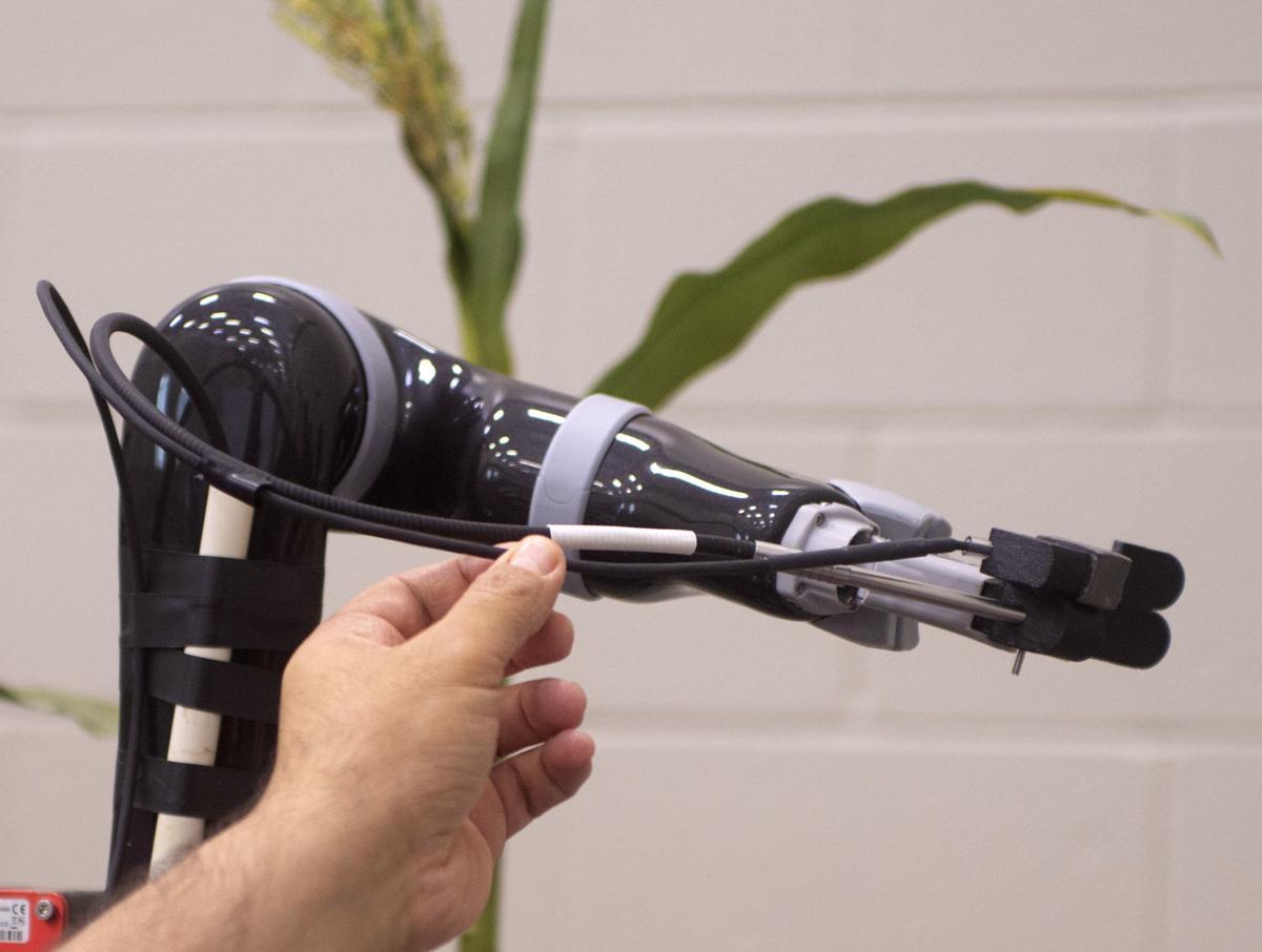 Plant Robots, 6.20