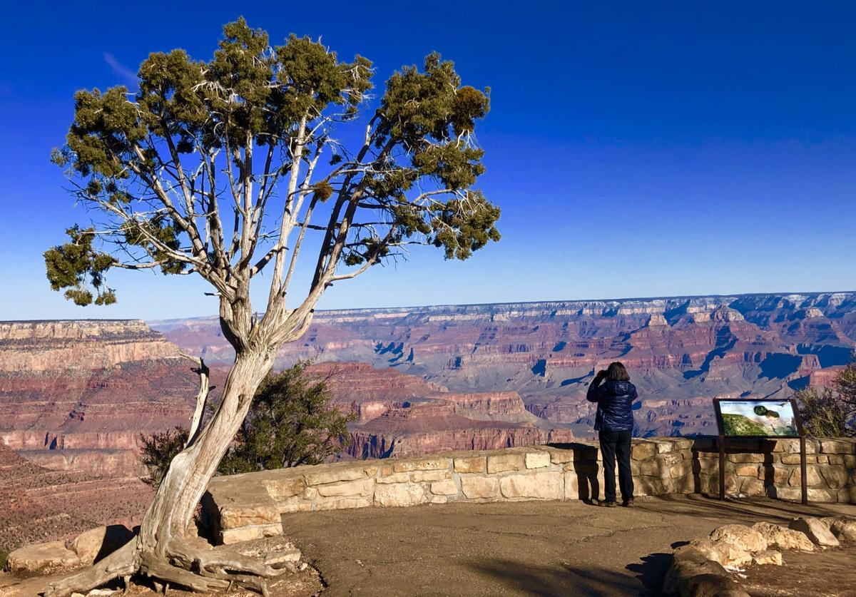 A visitor uses binoculars to explore the canyon