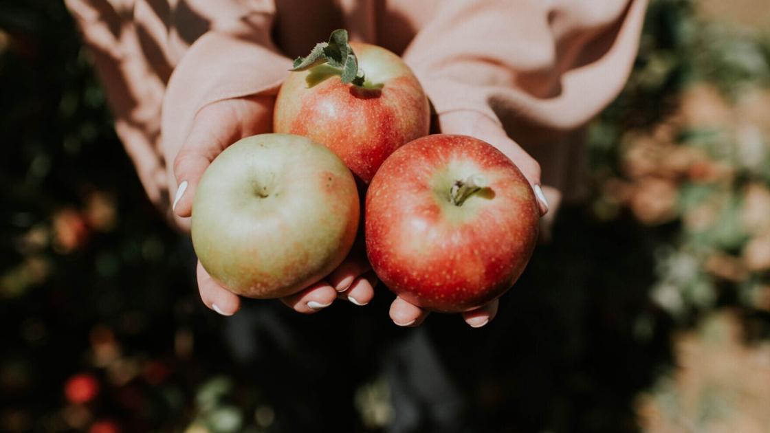 3 TikTok recipes to make during apple season