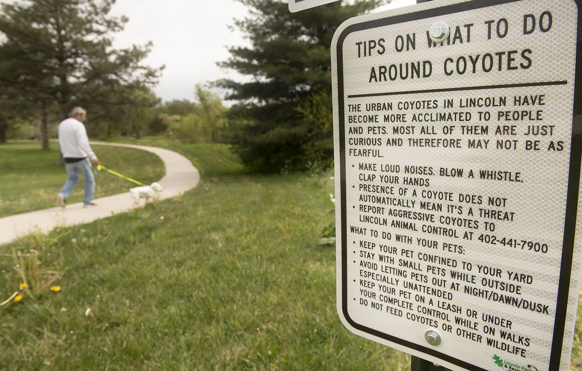 Coyote signs