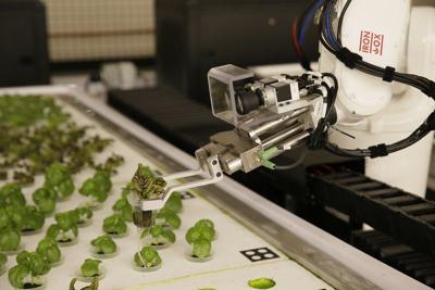 agri robots.jpeg