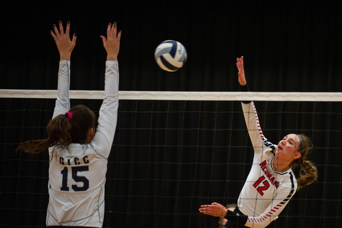 Bishop Neumann Survives Centennial Conference Battles High School Volleyball Journalstar Com