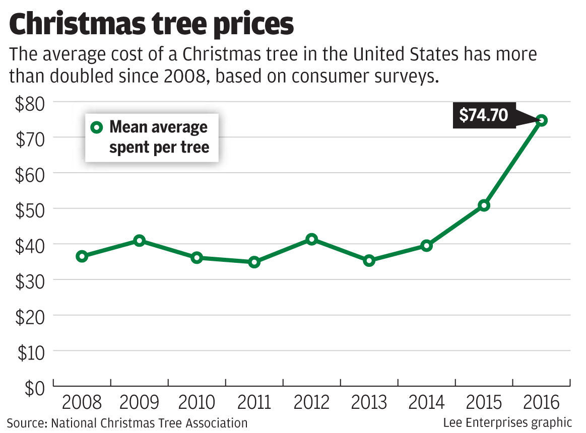 For Nebraska Christmas tree farmers, 2012 drought\'s lingering impact ...