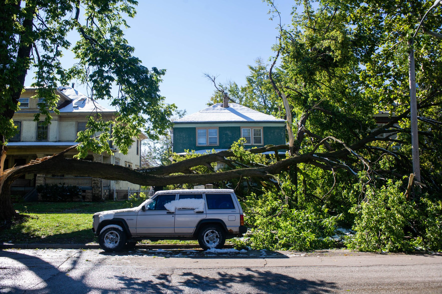 Wet snow damages trees, severs power and sends woman to hospital   Journal Star