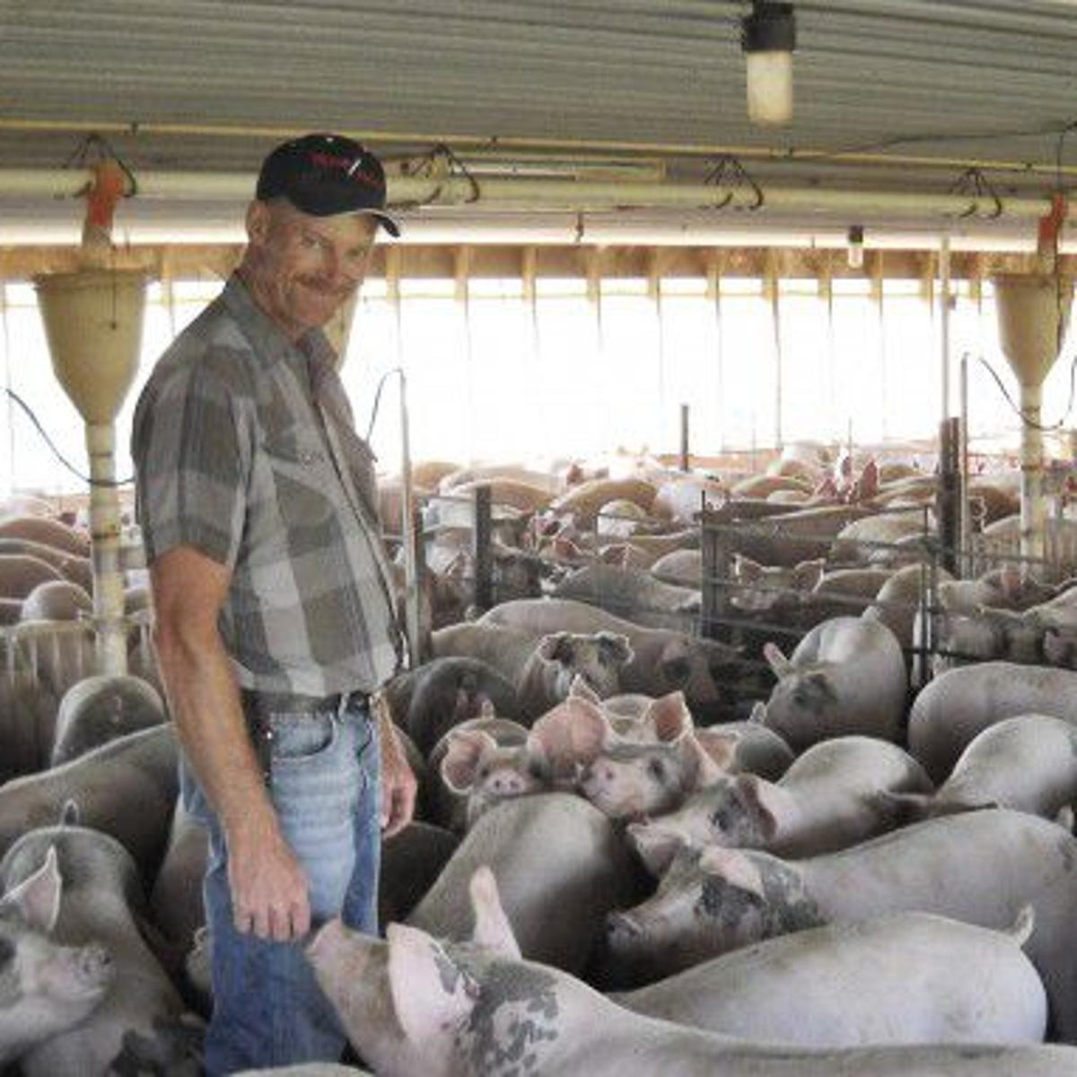 Epilogue: Farmer takes the waste and odor out of hog manure