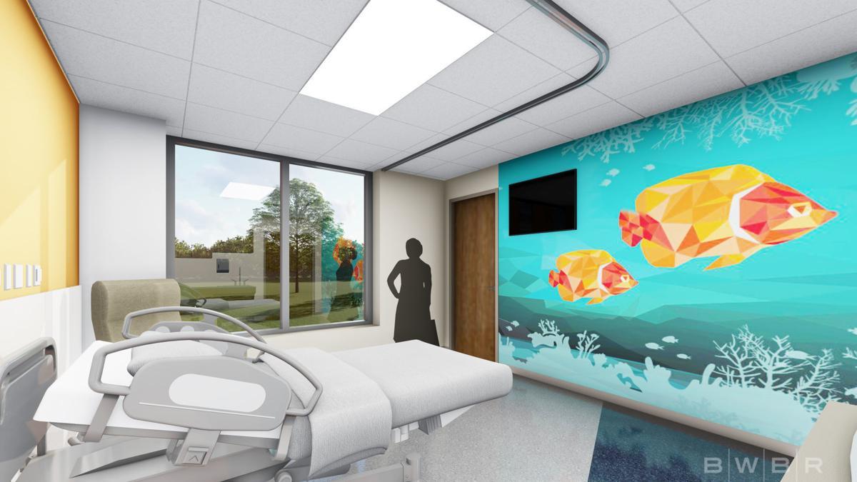 St E S Plans New Children Focused Emergency Care Department Local Business News Journalstar Com