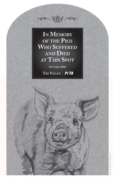 Pig memorial