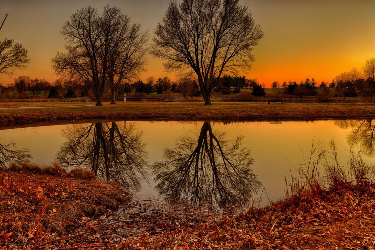 Holmes Lake reflections