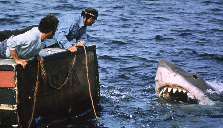 "A scene from the movie ""Jaws"""
