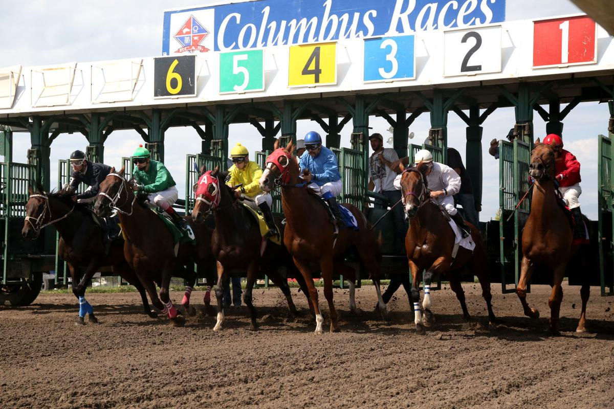 Columbus horse races