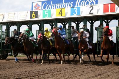 Columbus horse races