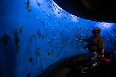Henry Doorly Zoo's Scott Aquarium