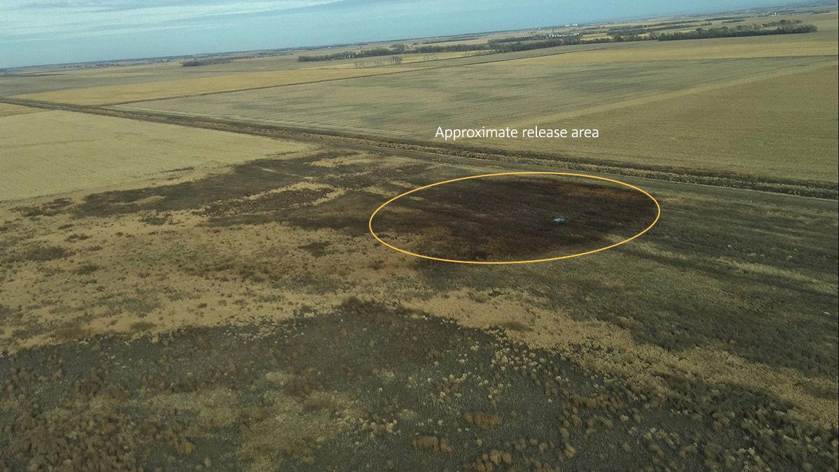 Keystone Pipeline Leaks 210k Gallons Of Oil In South
