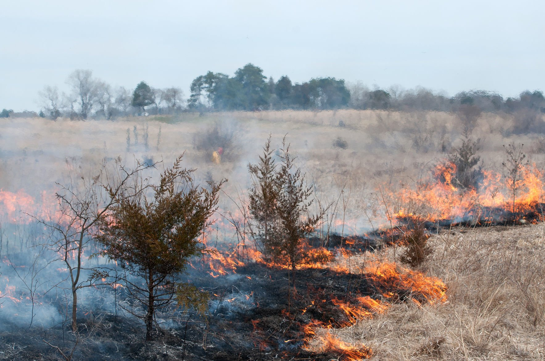 Notice smoke? Parks and Rec doing a prescribed burn near Denton | Journal Star