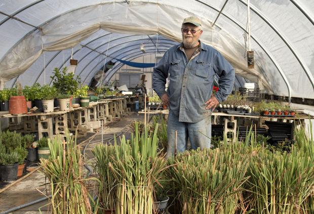 Gene Gage greenhouse