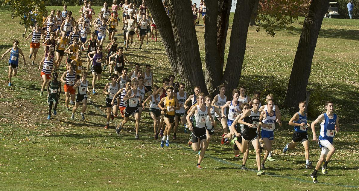 2017 state cross country meet