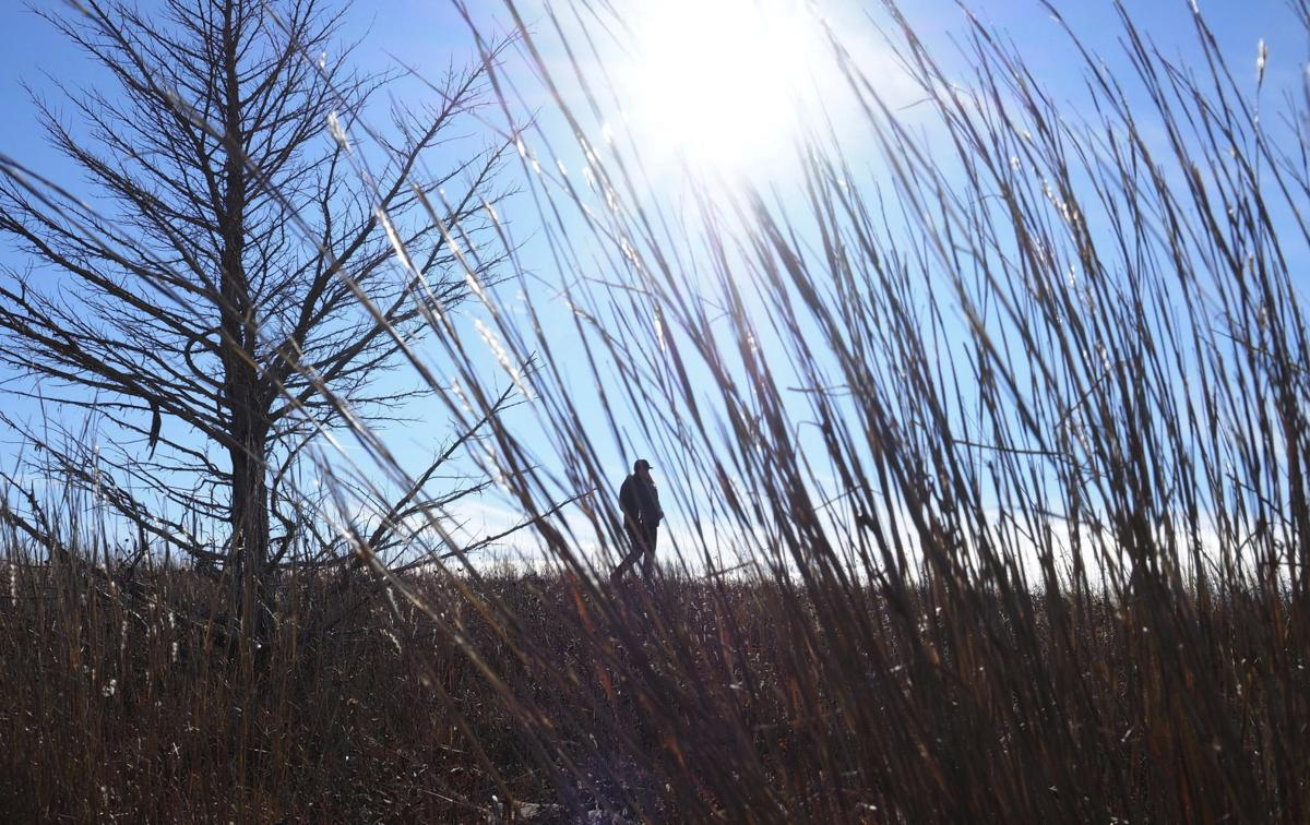Exchange-Sand Hills Grassland