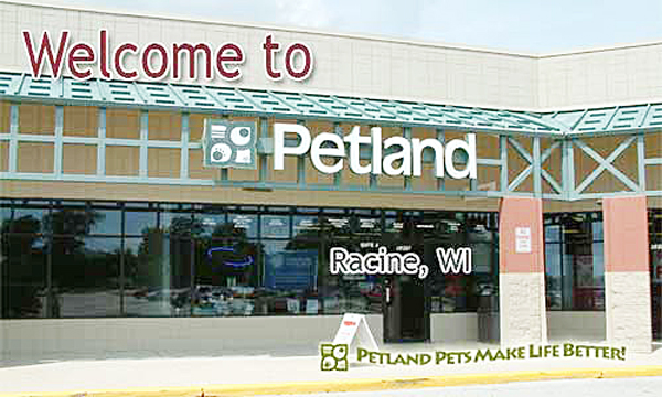 Petland Racine | pet adoption | puppies | Racine, WI