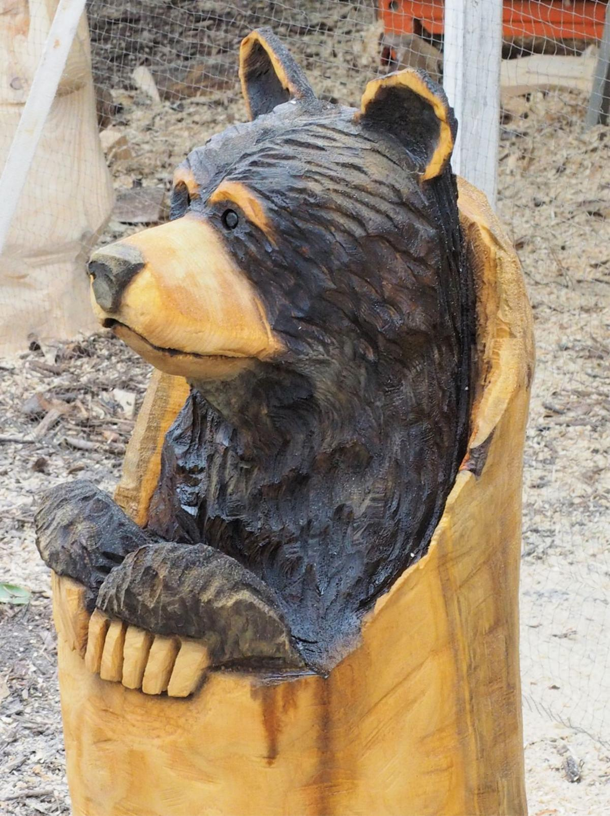 Chainsaw carving art festival at river bend oct