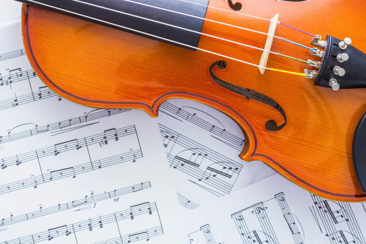 lakeshore youth philharmonic orchestras fall 2017-18 auditions and