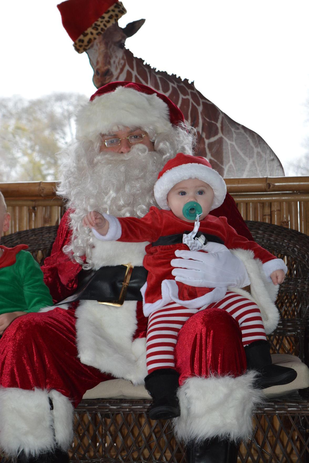 Brunch with Santa at zoo