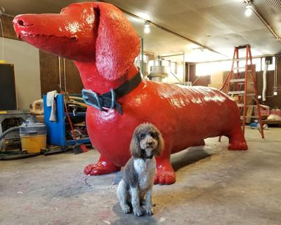 WHS big red dog