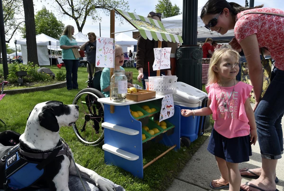 Lemonade stand for service dogs