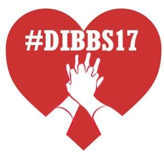 Dibb17 logo