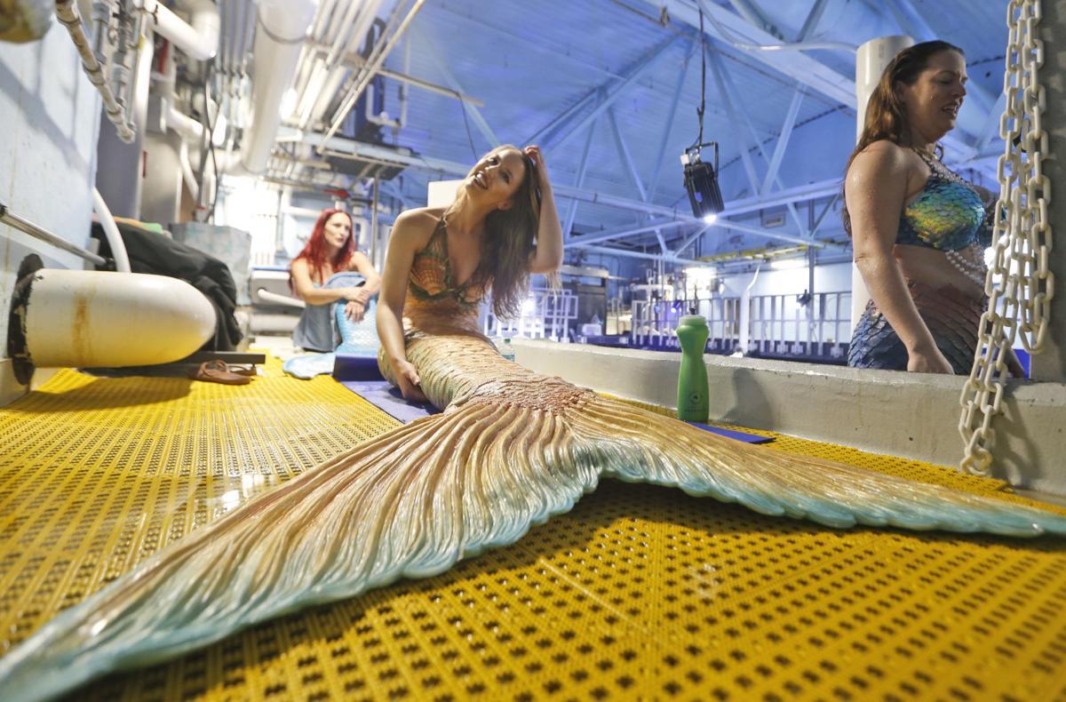 Photos: Aquarium mermaids promote the sea, conservation   National