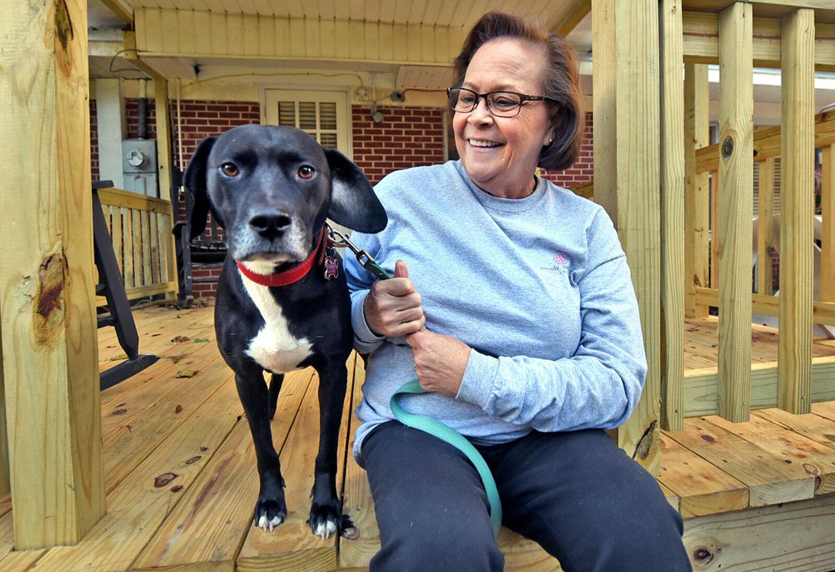 Missing dog finds owner working at Dothan Walmart