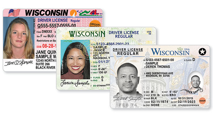 Stock sample driver's licenses