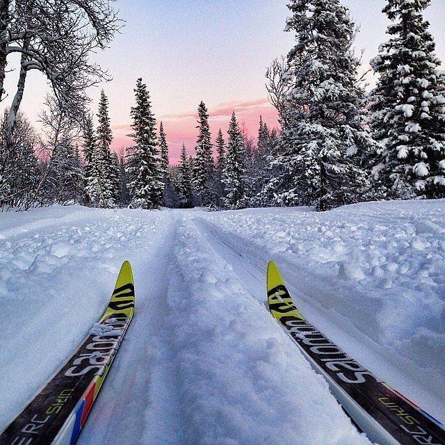 CROSS COUNTRY SKI PHOTO