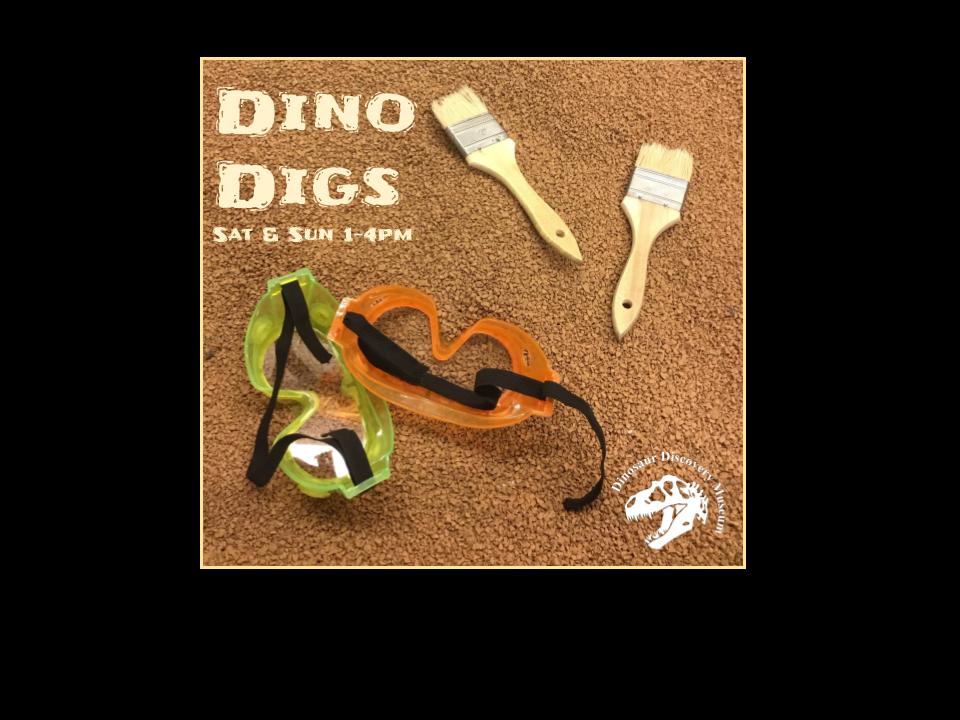 Dino Digs